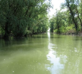 Danube Delta - waterway
