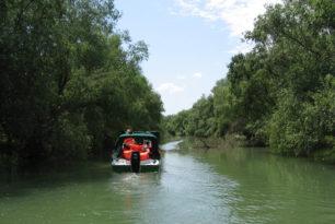 I am the Danube Delta