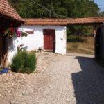 Backyard of traditional house
